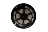 LED STRIP RGB+WW ROL 50-M. 24V/DC 12W/M. RGB + 3000K _